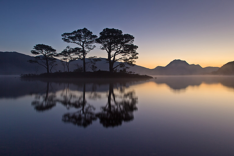 Scots pines on small island in Loch Marre reflected at dawn, Torridon, Scotland
