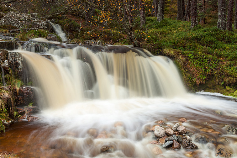 Waterfall in pine forest, Cairngorms National Park, Scotland
