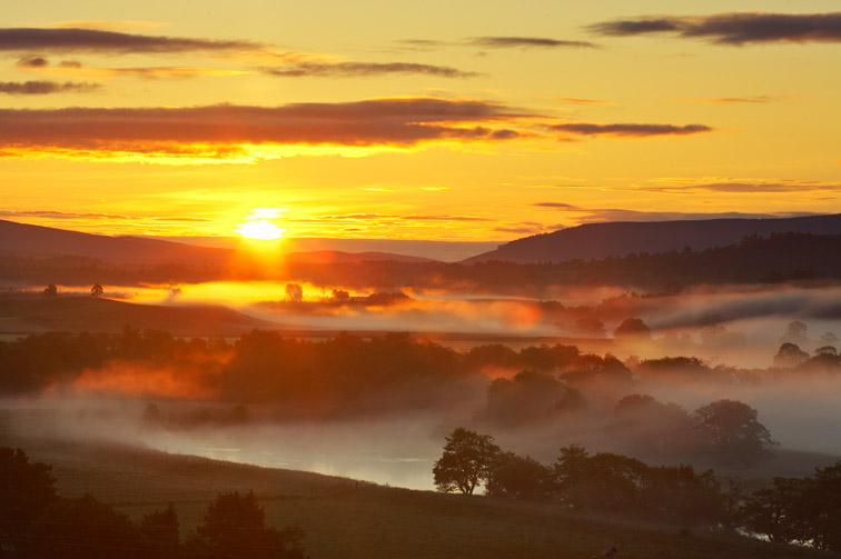 Low lying mist over River Spey & scattered woodland at sunrise. Strathspey, Scotland. July 2005.