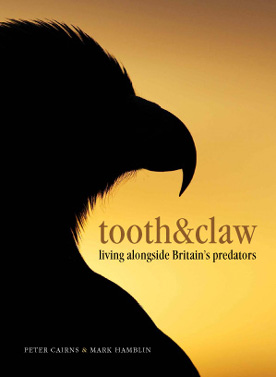 Tooth & Claw – Living alongside Britain's predators