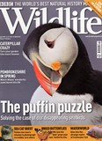 BBC Wildlife April 09