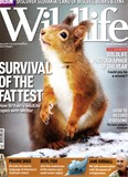 BBC Wildlife February 2010