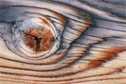 Close-up of wood pattern in aging sawn timber.